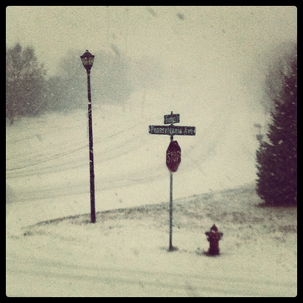 A street sign and light post in a blizzard in Eagan Minnesota November 2011