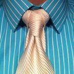 Cape knot