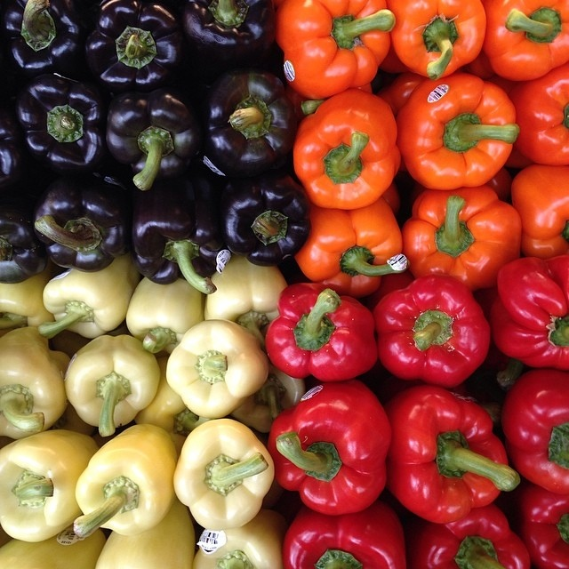 peppers in four different colors